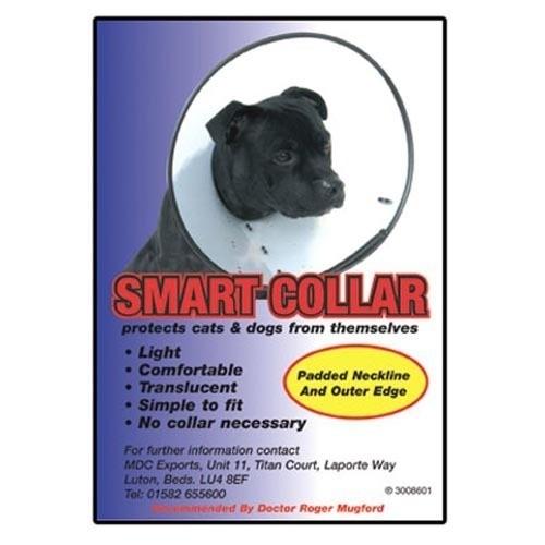 Colier plastic caine 2 (10-12/25-31)