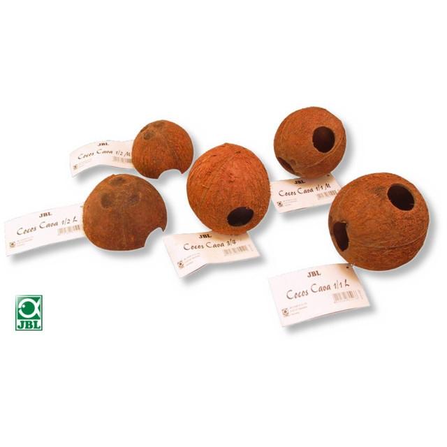 Decor terariu, JBL Cocos Cava 1/2 M