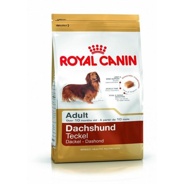 Hrana pentru caini, Royal Canin, Dachshund Adult