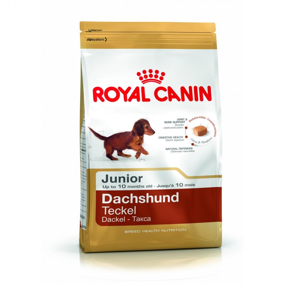 Hrana pentru caini, Royal Canin, Dachshund Junior, 1.5Kg