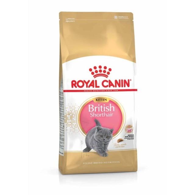 Hrana pentru pisici, Royal Canin British Shorthair Kitten