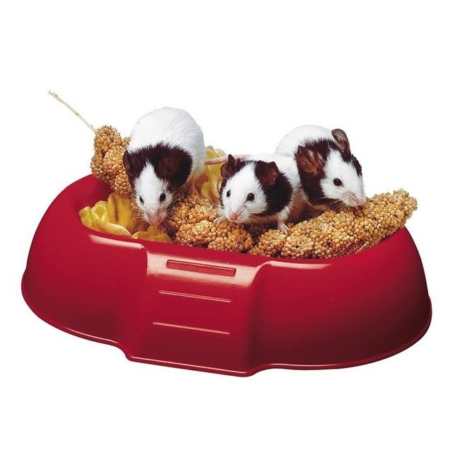 Hranitor hamsteri Ferplast DADA 4706