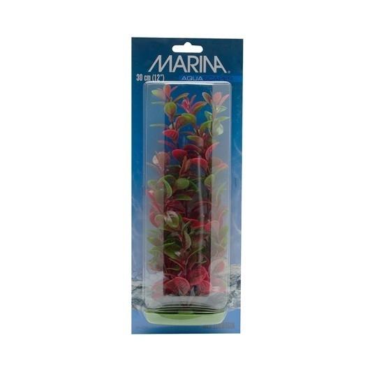 Plante pentru acvariu Hagen Marina Red Ludwigia PP819, 20 cm