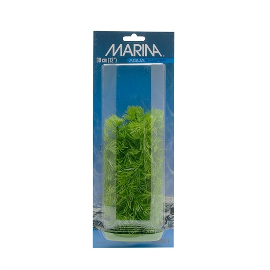 Plante pentru acvariu Hagen Marina Hornworth PP512, 12.5 cm