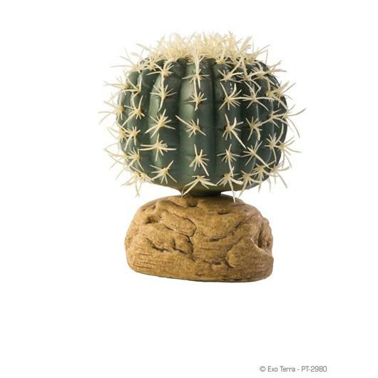Plante pentru terariu, Exo Terra, Barrel Cactus PT2980 S