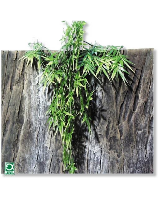 Plante terariu JBL TerraPlanta Madag.Bambus S19