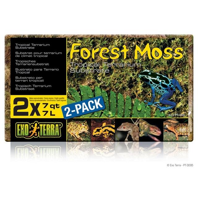 Substrat Terariu Hagen Exo Terra Forest Moss, 500 GR